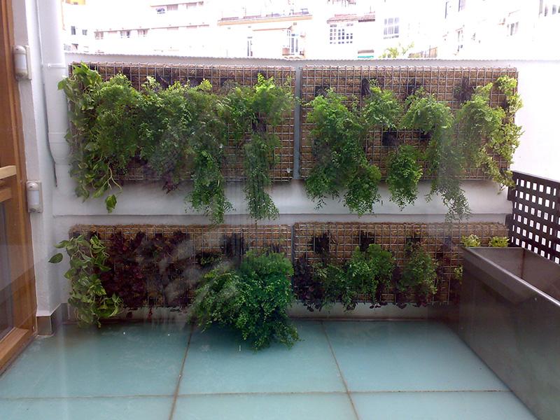 Estructuras metálicas para jardín vertical